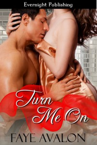 Turn Me On, Faye Avalon, Evernight Publishing, contemporary erotic romance
