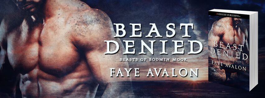 beast-Denied-evernightpublishing-JayAheer2017-baner2
